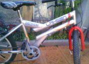 Vendo bicicleta aro 20 lashen discovery