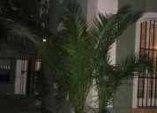 Alojamiento diario en santiago de chile