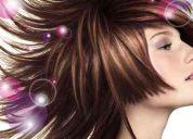 Alta peluqueria damaris