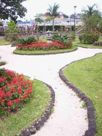 Conchuela BLANCA Para Jardin