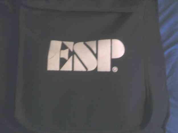 se vende bajo ESP+AMPLI.LANEY+FUNDA Y ATRIL