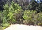parcela (terreno) curacavi km 54