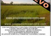 (044) se vende hermoso campo con pradera y bosque nativo
