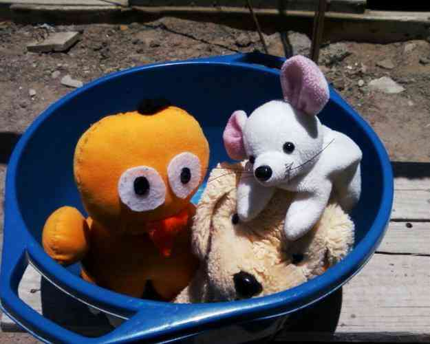 se buscan peluches