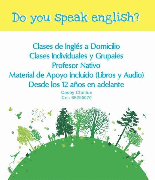 Clases de inglés a domicilio; profesor norteamericano; Coquimbo, La Serena.