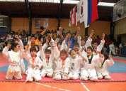 Clases particulares de taekwondo