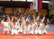 Clases particulares  de taekwondo infantil  en vitacura