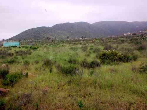 Terreno Cerca de Tongoy-Guanaqueros