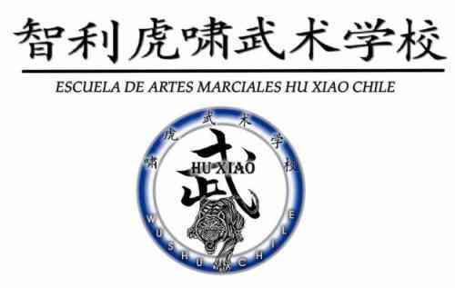 Aprende Wushu y Sanshou en Viña del Mar