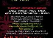 Clases de capoeira en bellavista / providencia