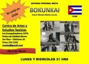 Bokunkai defensa personal mixta