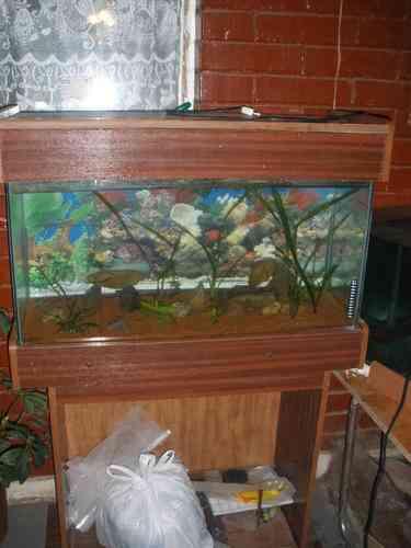 acuario 80*30*40 mueble y tapa de luz