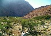 Parcela valle de elqui - cochiguaz