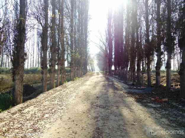 Camino Lonquén Sur - Loreto