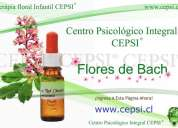 Cepsi ®.flores de bach  pana niños santiago chile