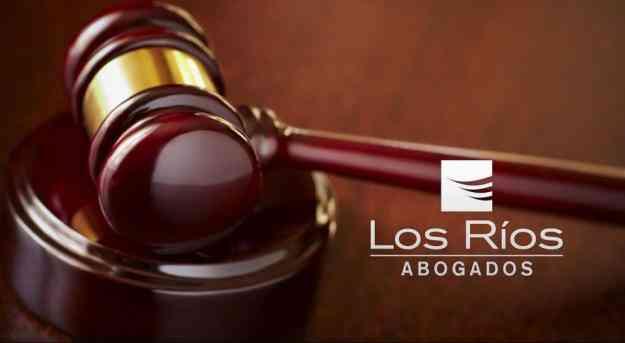 Abogado Valdivia, Derecho de familia y derecho comercial