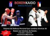 defensa personal boxeo y karate para niños, jóvenes y adultos