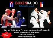 defensa personal con técnicas de boxeo y karate para niños, jóvenes y adultos