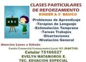 clases particulares de reforzamiento para educación básica ( hasta 5° )