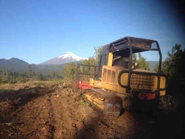 Trituradoras Forestales - Chile