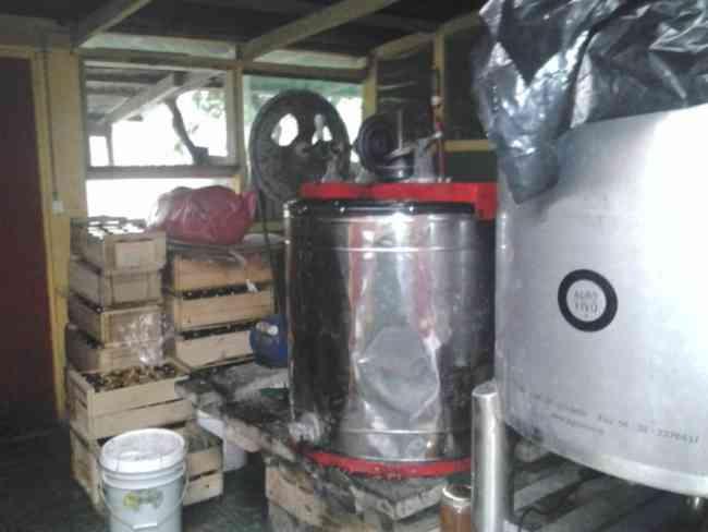 Centrifuga para apicultura 15 marcos