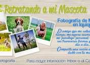 Sesión de fotos para mascotas