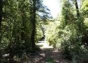 vendo hermoso terreno, a orilla de camino a los cajones coñaripe