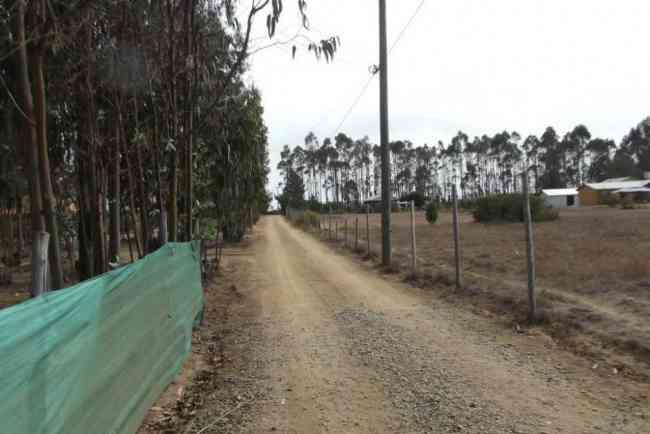 Parcela de agrado camino a Algarrobo CRUCE TUNQUEN