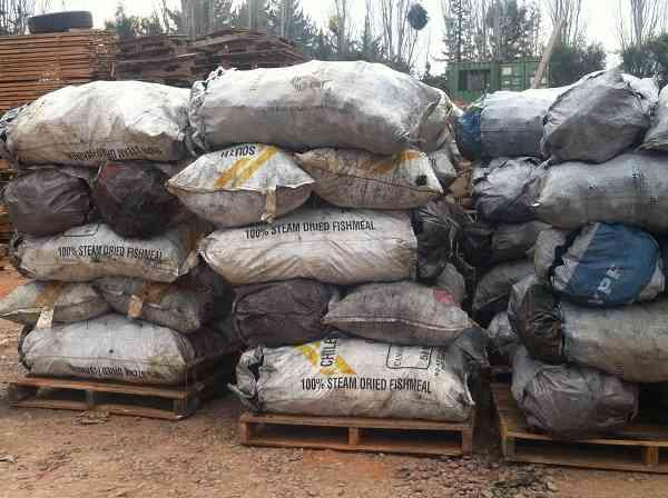 Carbón de Espino en Sacos de 50 Kilos ($ 400.- el kilo)