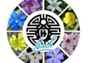 Se realiza terapia con flores de bach en consulta o a domicilio