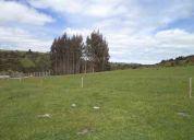 venta de terreno de 6 has de bosque nativo
