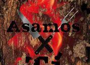 Asados argentinos a domicilio asamos x tí