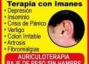 Sanacion con imanes  biomagnetismo  santiago-chile