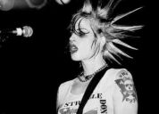 Se busca vocalista para banda tributo a the distillers