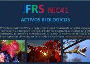 Curso ifrs nic41 activos biologicos, viÑas, vid, vides