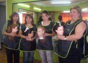 Cursos de peluqueria unisex fono: (02) 459-6609
