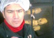 Soy  maestro sanwuchero  y tambien en pollos asados  agas  y a carbon