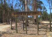 Oferta: parcelas en condominio el quisco sector totoral  $ 16.500.000