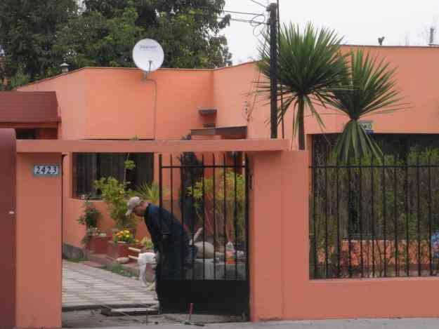 Pintura casas fachadas martelina interiores for Como elegir pintura para casa