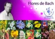 Terapia floral bach