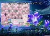 Animaciones de cumpleaÑos disco peque payasitas pintacaritas baby shower
