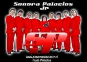 Sonora palacios jr.