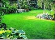 Mantencion de jardines