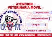 Trabajo medico veterinario