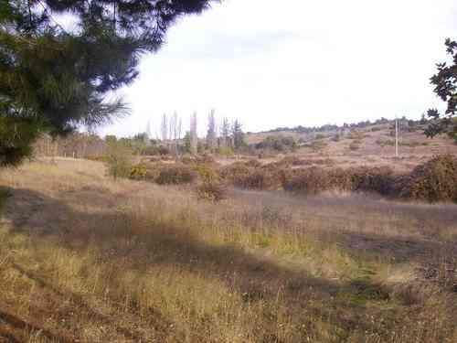 Venta de terreno en Viluco 3.000 m2