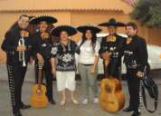 Mariachis sal y tequila serenatasy charros