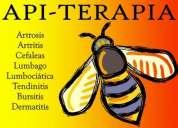 Apiterapia tratamientos del dolor cronico y enfermedades