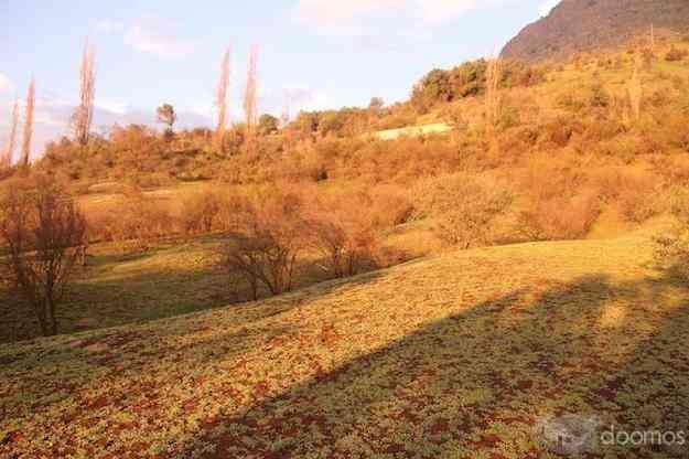 Vendo terreno de 5.000mts en colina, sector las canteras