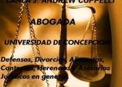 abogado concepción, consulta gratis