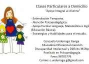 Clases particulares de 1° a 4° básico, preparación de pruebas y tareas